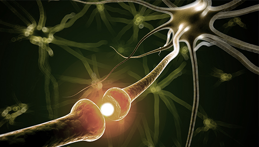 graphic shows electrical storm in the brain